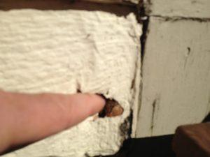Masonite House siding repair