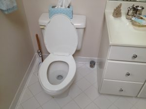 Low flow toilet technology.