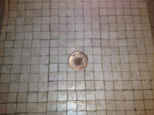 Clogged Sink Backing Up Shower Drain